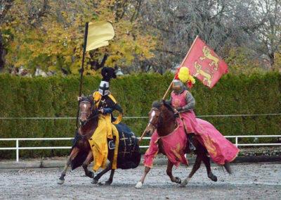 Samba et nectarine chevalier